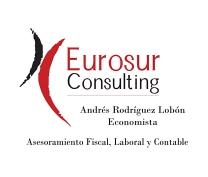 EUROSUR CONSULTING